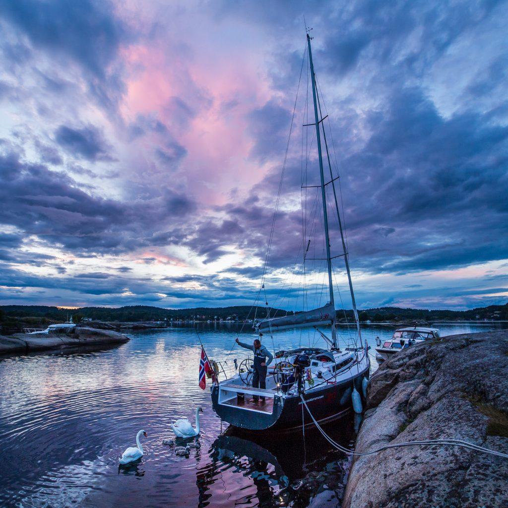 Mating av svaner fra båten en vakker sommerkveld